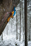 Klättra vinter, snö som tycker om den extrema vintersporten Extrem aktivitet fotografering för bildbyråer