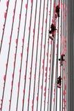 Klättrare som hänger apelsinen, sjunker på Erasmus-bron Arkivbild