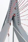 Klättrare som hänger apelsinen, sjunker på Erasmus-bron Royaltyfri Bild