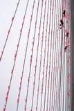 Klättrare som hänger apelsinen, sjunker på Erasmus-bron Arkivfoto
