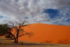 Klättring för dyn 45. Sossusvlei Namibia Arkivfoto