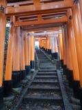 Klättring Fushimi Inari royaltyfri foto