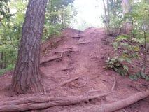 klättring uppåt Arkivfoto
