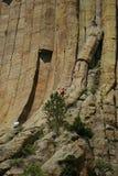 klättringjäkeltorn royaltyfria bilder
