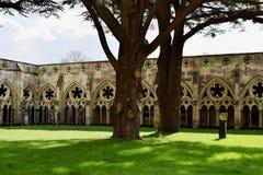 Klöster, Salisbury-Kathedrale, Salisbury, Wiltshire, England Lizenzfreies Stockfoto