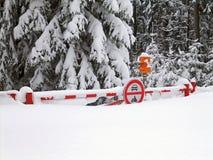 klęska śnieg Obrazy Royalty Free