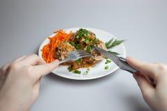 Klaar luie koolbroodjes, vleesballetjes op een witte plaat Royalty-vrije Stock Foto's