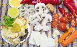 Klaar maaltijd en groenten voor haar die koken Royalty-vrije Stock Foto's