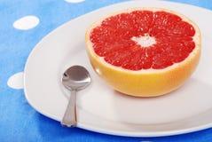 Klaar om rode grapefruit te eten Stock Foto's
