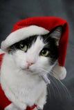 Klaar voor Kerstmis Royalty-vrije Stock Fotografie