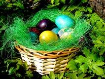 Klaar voor Pasen? Stock Afbeeldingen