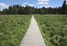Kladska peats Stock Image