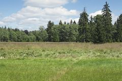 Kladska peats Stock Photography