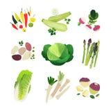 Klamerki sztuki warzywa ustawiający Obraz Stock