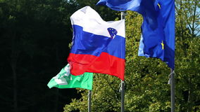 Klappende vlaggen stock video
