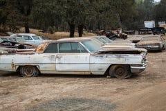 Klapperkiste-Relikte alte Scrapper-Autos stockfoto