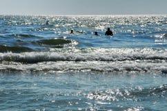 Klappstuhl auf Strand in Brighton Stockfoto