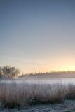 Klar blå himmel och dimmig äng Arkivbild