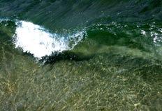 klar crystal wave Arkivbild