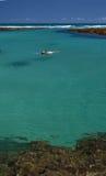 klar crystalline havssimning Arkivfoto