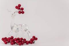Klar glass ren Royaltyfri Bild