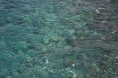Klar havsdetalj royaltyfria foton