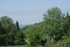 Klar natur i Mussera, Abchazien Arkivbild