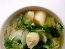 Klar soppa med Bean Curd, blandninggrönsaken, tofuen och havsväxt i den vita bunken på vit bakgrund Vegetarisk mat, sund mat som  Arkivbild