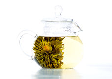 klar tea för blomma half Royaltyfri Foto