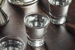 Klara alkoholiserade ryska vodkaskott Royaltyfri Fotografi