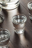 Klara alkoholiserade ryska vodkaskott Arkivfoto