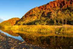 Klara himlar på Glen Helen Gorge Arkivbild