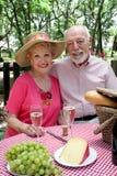 klara pensionärer för picknick till Royaltyfria Bilder