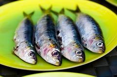 klara sardines för bbq Arkivbilder