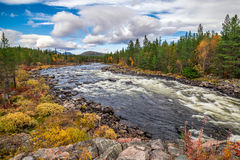 Klaralven river near Engerdal, Norway Royalty Free Stock Photos