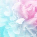 Klare Farbrose in der weichen Farbart auf Maulbeerpapierbeschaffenheit Lizenzfreie Stockfotografie
