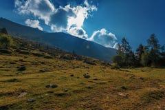 Klare Landschaft Stockfotografie