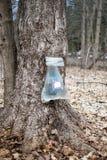 Klare Plastiktaschen sammeln Saft lizenzfreie stockfotos