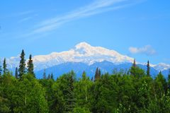 Klare Sicht 100% des Bergs Denali an einem sonnigen Tag Stockfotos