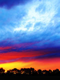 Klare Sonnenuntergangfarben über Bäumen Stockbild