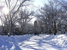 Klarer blauer Himmel nach schweren Schneefällen Stockbilder