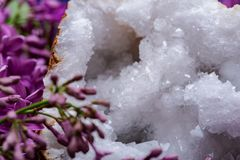 Klarer Crystal Quartz Geode mit der kristallenen druzy Mitte umgeben durch purpurrote lila Blume lizenzfreies stockbild