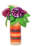 Klarer farbiger Vase mit purpurroten Blumen der Chrysantheme und des dhalia, lokalisierter, weißer Hintergrund Lizenzfreies Stockbild