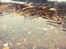 Klarer Fluss stockfotografie