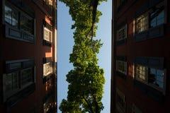 Klarer Himmel und Stadtwohnungen Lizenzfreies Stockbild