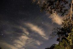Klarer nächtlicher Himmel in Teresopolis, Rio de Janeiro, Brasilien Lizenzfreie Stockfotografie