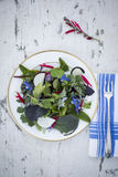 Klarer Salat Lizenzfreie Stockfotos