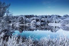 Klarer See in einem Waldinfraroteffekt, der kalten Winterblick gibt Stockbilder