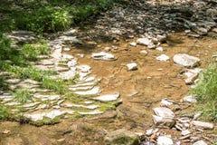 Klares Fließen Rocky Creek stockfotos