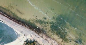 Klares grünes Wasser von oben stock video
